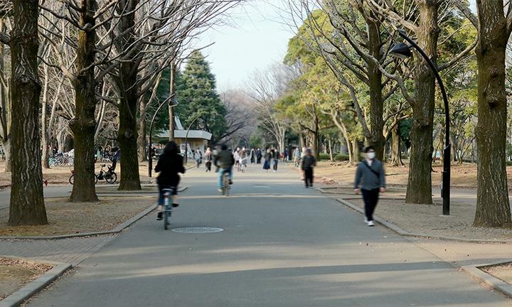 注文住宅の施工範囲:練馬・光が丘公園