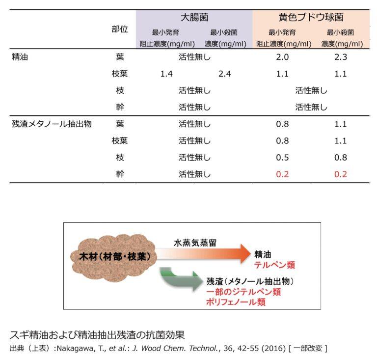 木材の抗菌効果